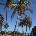 Kreusler Park Beach