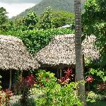 Garden View with Traditional Samoan Fale