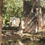 Photograph of the plantation ruins showing tall coquina rock chimneys.Photograph by PMAcontact