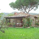 Our Lovely Leccino Cottage at Fontanaro