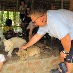 Feeding Lion Cubs at Ukutula