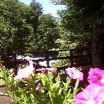 Terraza con Vista al Salto del Carileufu
