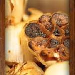 Exceptional Rustic Italian Cuisine