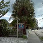 200 steps down this walkway to the Siesta Key Beach