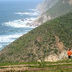 Pierce Point trail in Point Reyes National Seashore