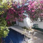 Los Milagros Courtyard