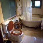 Bathroom (suite #208)