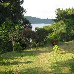 Foto van Orchid Lake Resort