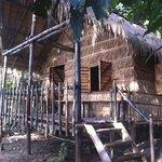 Foto de Tree House Bungalows