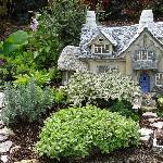 Small garden scene
