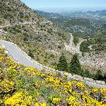 The road to Grazalema