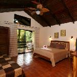 Comfortable Rooms for Wildlife Viewing