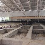 Museum Jinsha