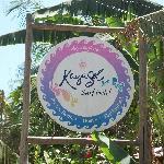Welcome to KayaSol