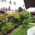 schöner & gepflegter Garten