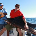 120 lb. Sailfish - caught around 7am - Oct 31/11