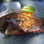 fresh fish for lunch at Isla Contoy