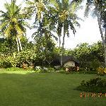 jardim maravilhoso e bem cuidado