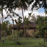 Shamas cottages