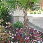 Belles plantations