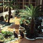 The central atrium.