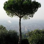 Photo of Agriturismo San Mattia
