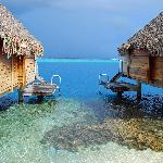 Bungalows on the Reef - Great Snorkeling Outside your Door!