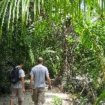 Entering the rainforest again from Manuel Antonio beach