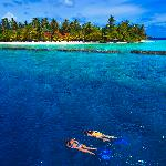 Snorkeling on the house reef