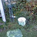 Creosote left lying around in garden