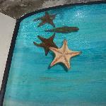 Etoile de mer