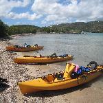 We took a Kayak tour on the island.