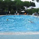 piscina adulti