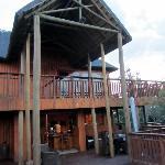 Giraffe Lodge Addo Afrique