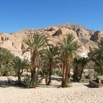Ain Khudra