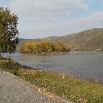 the Rhein river