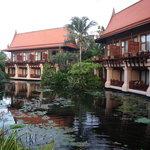 Lagoon Rooms
