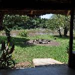 Blick von der Bar auf den Mara River