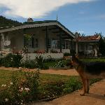 Red Hill Nature Resort Foto