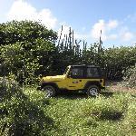 Jeep wel noodzakelijk, leuke ritjes maken