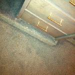 Fleckiger Teppich überall