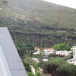 interesting tree line view from 2inn1
