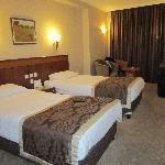 Lion Hotel Foto