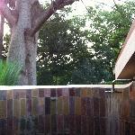 Outside Shower under a huge tree