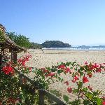 Playa el Coco vom Vorgarten