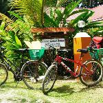 Buisson Guesthouse La Digue Foto
