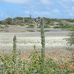 Washington Slagbaai National Park Bonaire