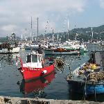Hotel panoramico vista Golfo -:) pesce fresco ogni giorno