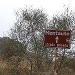 Montauto sign