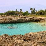snorkelling area